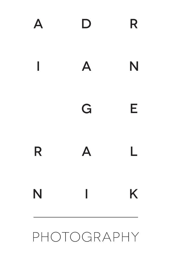 geralnik-logo-